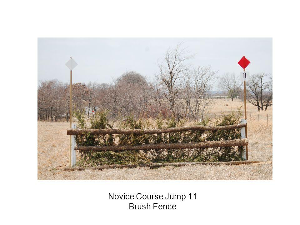 Novice Course Jump 11 Brush Fence
