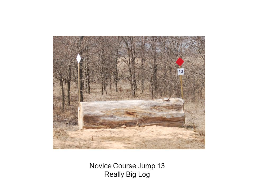 Novice Course Jump 13 Really Big Log
