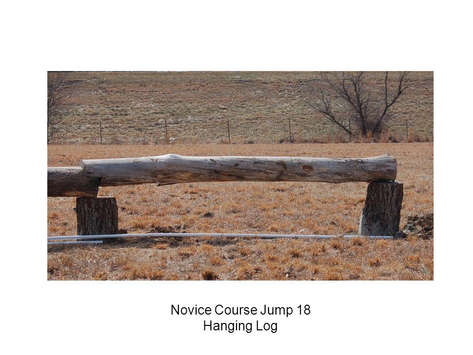 Novice Course Jump 18 Hanging Log
