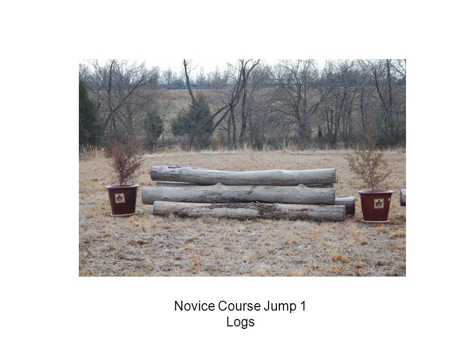 Novice Course Jump 1 Logs