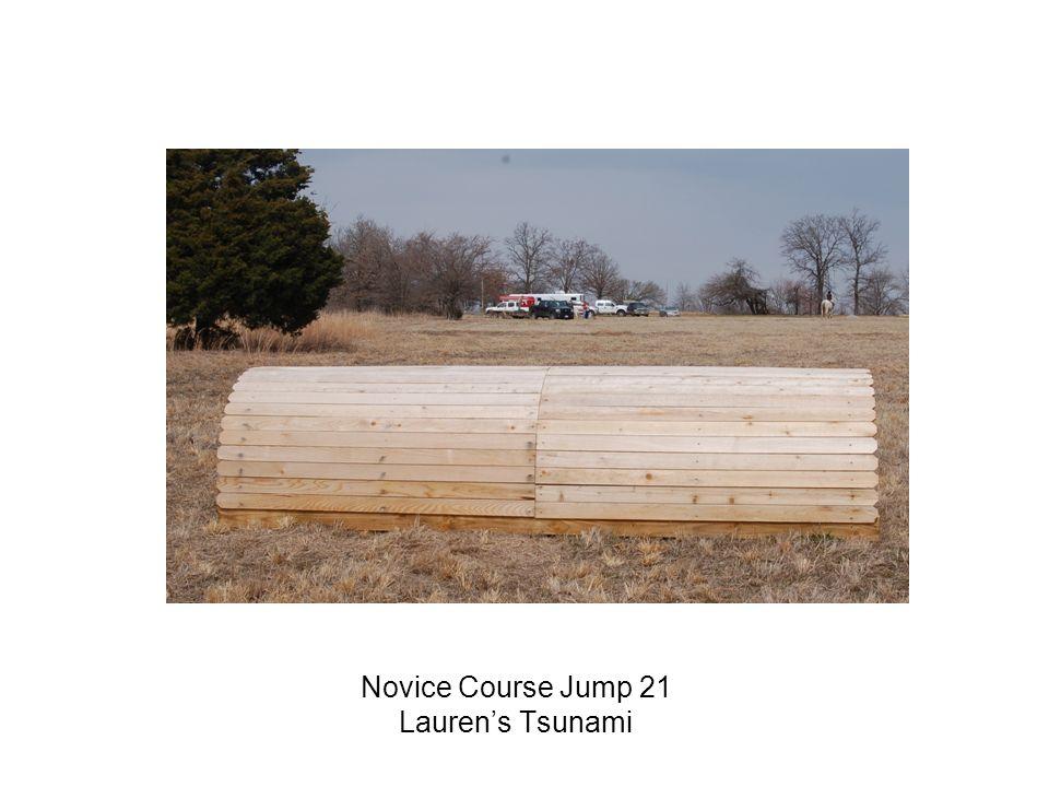 Novice Course Jump 21 Laurens Tsunami