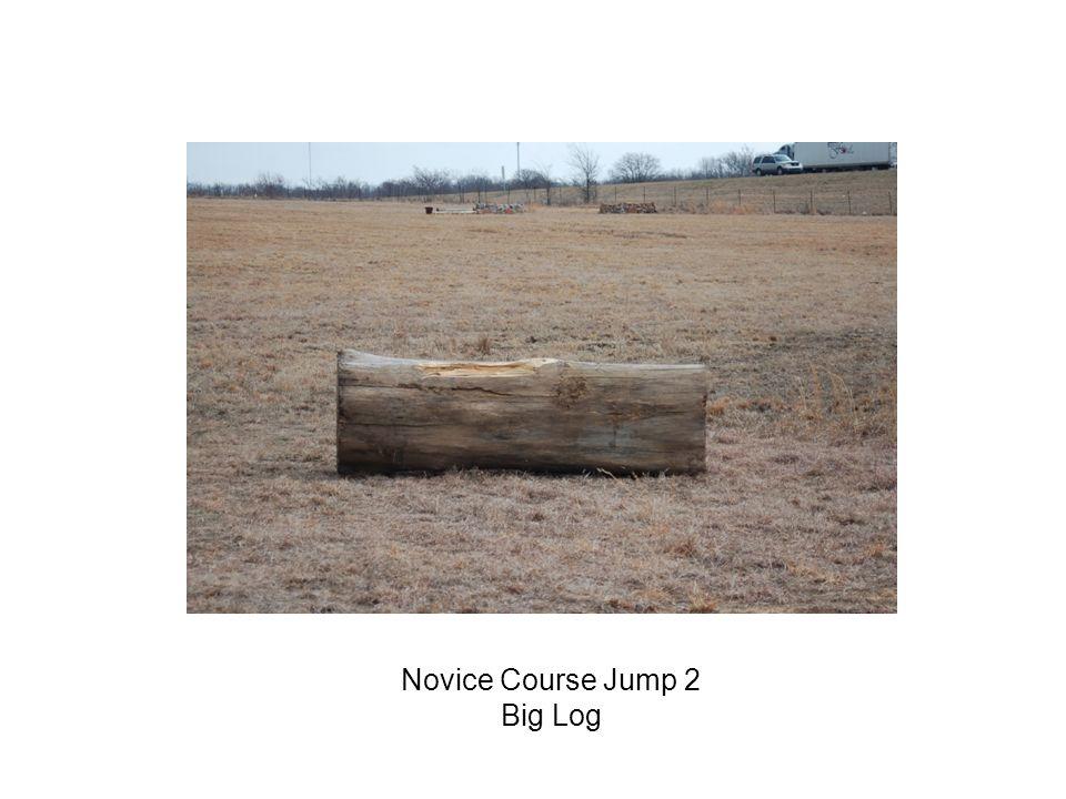 Novice Course Jump 2 Big Log