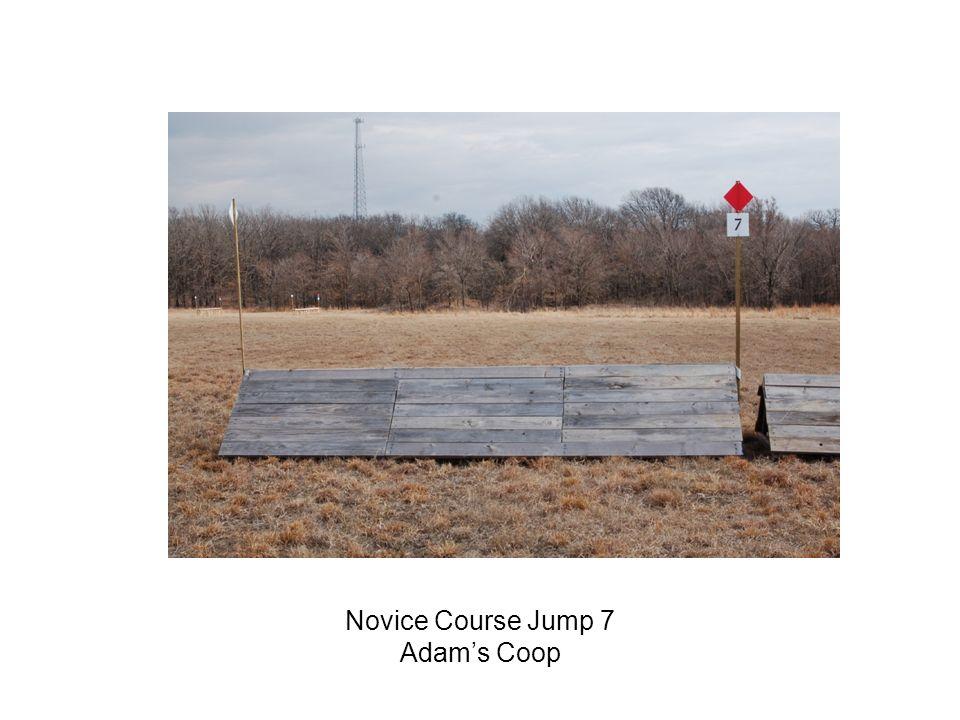 Novice Course Jump 7 Adams Coop