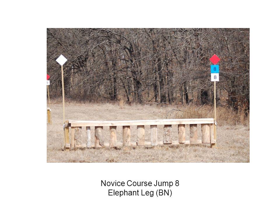 Novice Course Jump 8 Elephant Leg (BN)