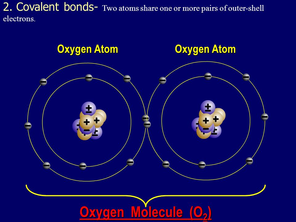 when electrons are shared equally NONPOLAR COVALENT BONDS H 2 or Cl 2