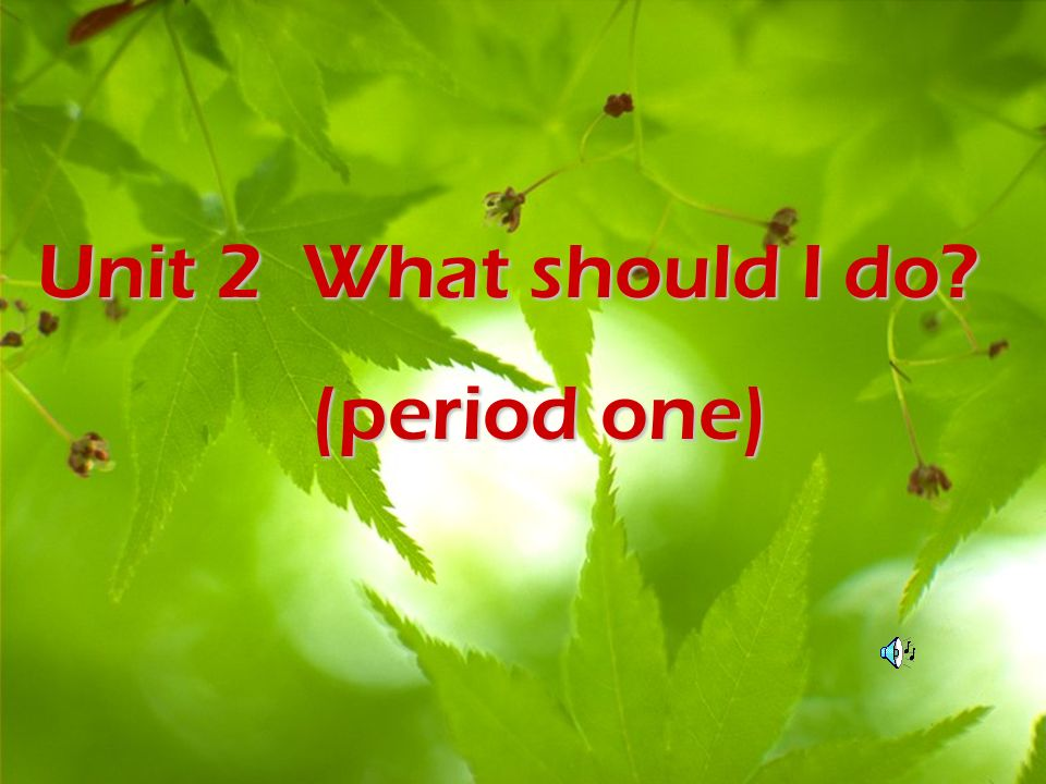 Unit 2 What should I do? (period one) (period one)