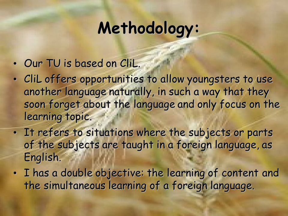 Methodology: Our TU is based on CliL. Our TU is based on CliL.