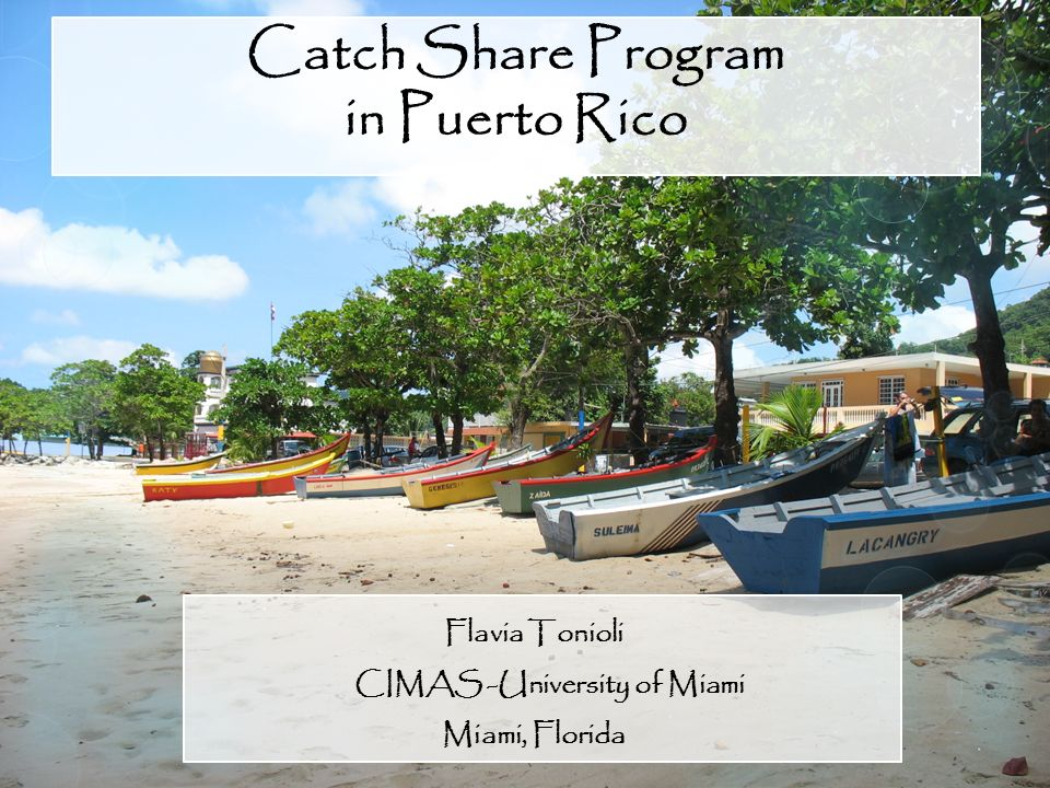 Catch Share Program in Puerto Rico Flavia Tonioli CIMAS -University of Miami Miami, Florida