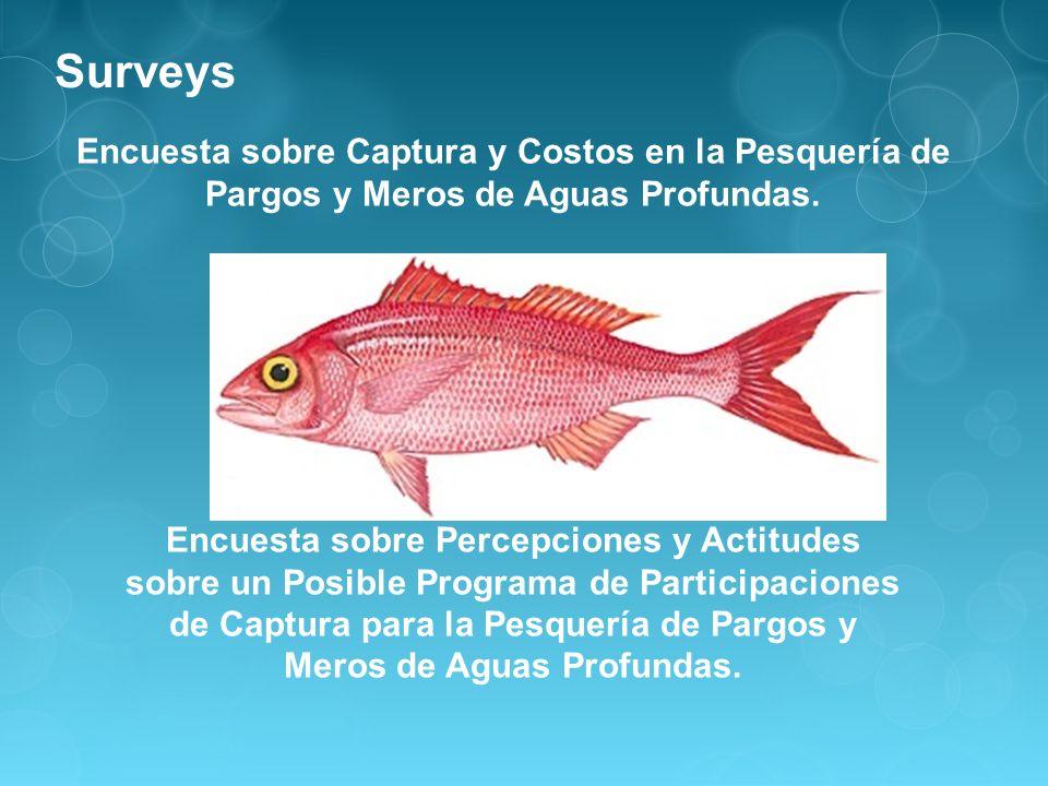 Encuesta sobre Captura y Costos en la Pesquería de Pargos y Meros de Aguas Profundas. Encuesta sobre Percepciones y Actitudes sobre un Posible Program