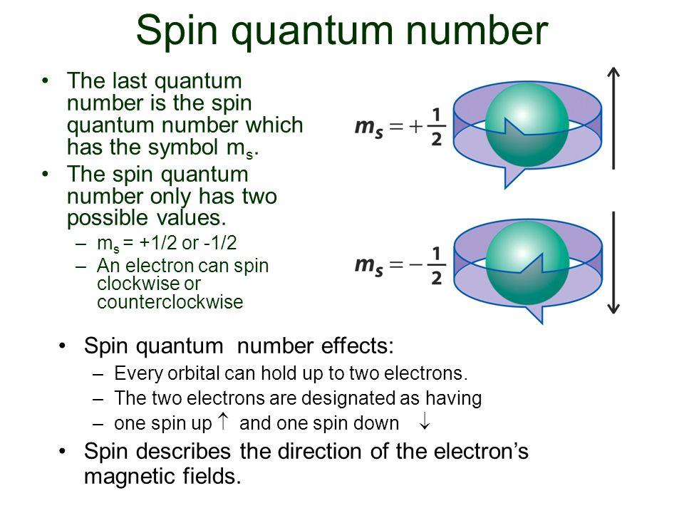 Spin quantum number The last quantum number is the spin quantum number which has the symbol m s. The spin quantum number only has two possible values.