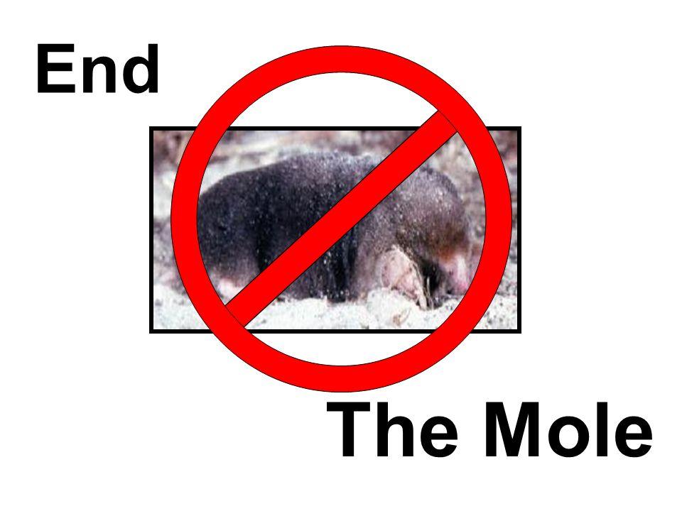 End The Mole