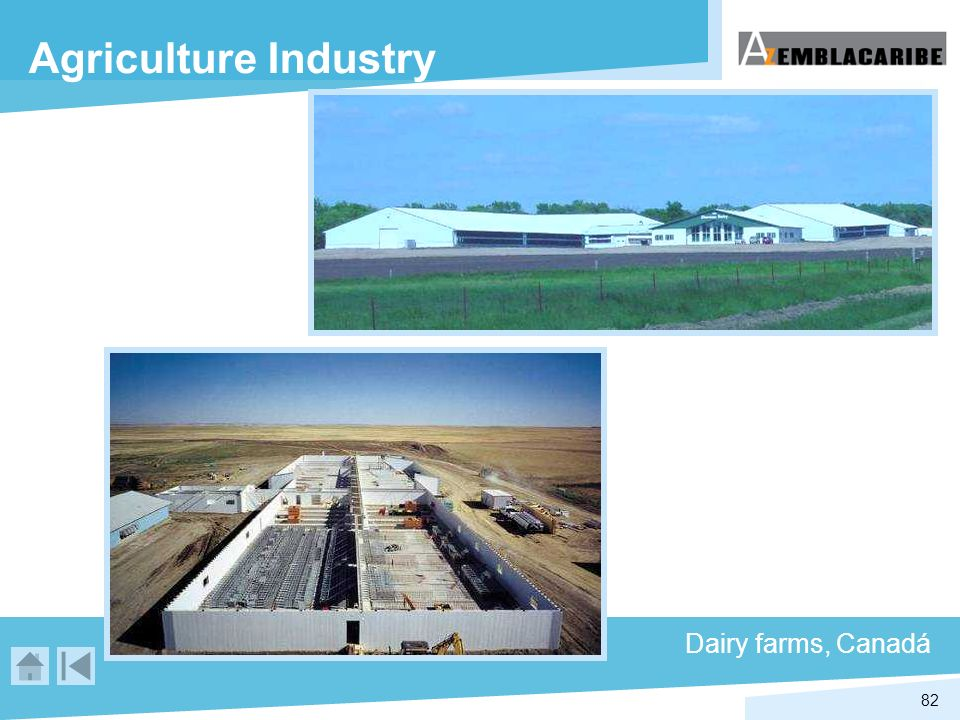 82 Agriculture Industry Dairy farms, Canadá