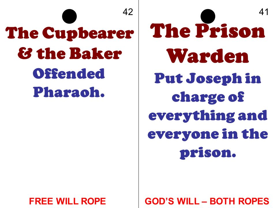 The Cupbearer & the Baker Offended Pharaoh. The Prison Warden Put Joseph in charge of everything and everyone in the prison. 4241 GODS WILL – BOTH ROP
