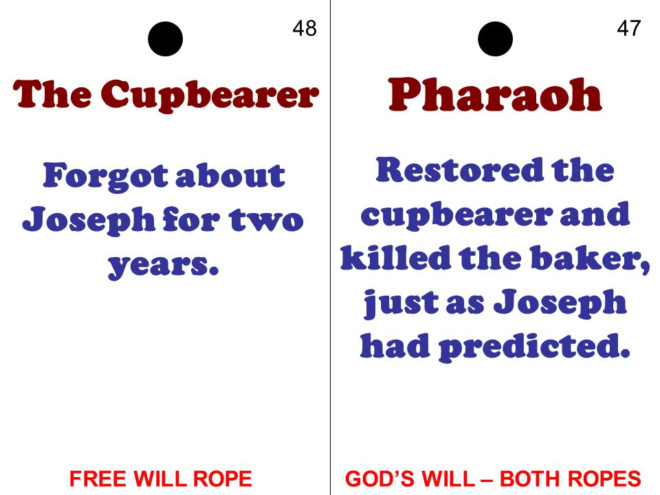 The Cupbearer Forgot about Joseph for two years. Pharaoh Restored the cupbearer and killed the baker, just as Joseph had predicted. 4847 GODS WILL – B