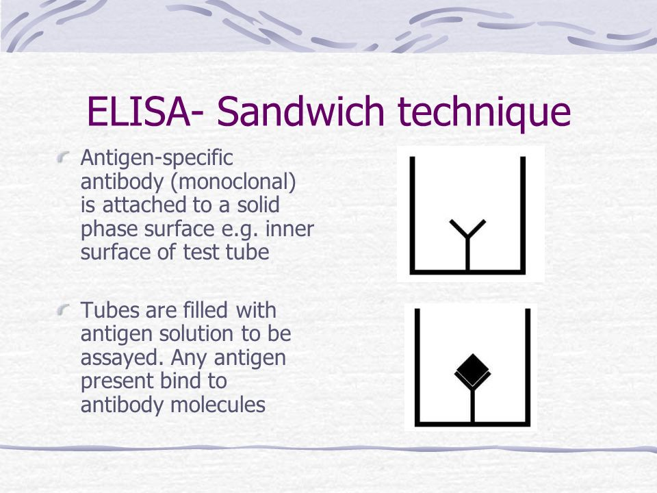 ELISA- Sandwich technique Antigen-specific antibody (monoclonal) is attached to a solid phase surface e.g. inner surface of test tube Tubes are filled