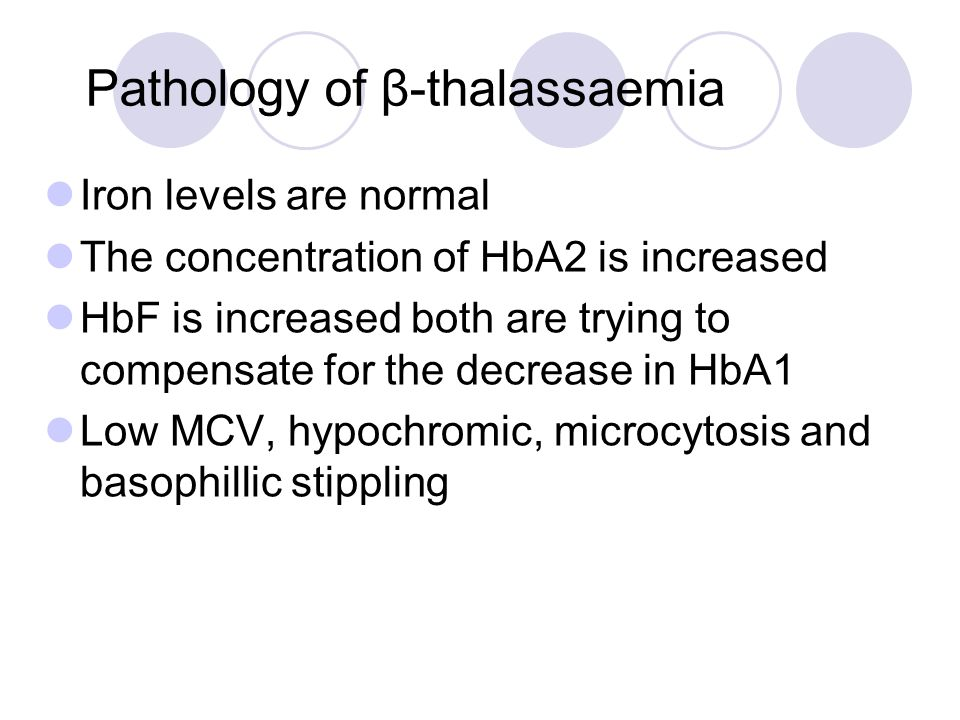 Pathology of β-thalassaemia Iron levels are normal The concentration of HbA2 is increased HbF is increased both are trying to compensate for the decre