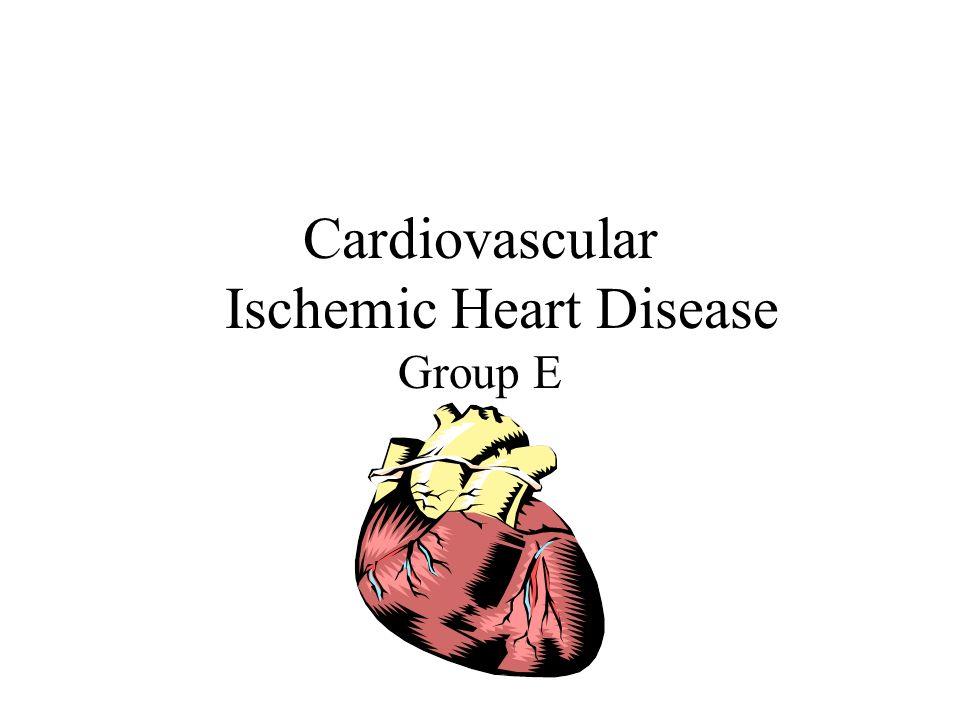 Cardiovascular Ischemic Heart Disease Group E