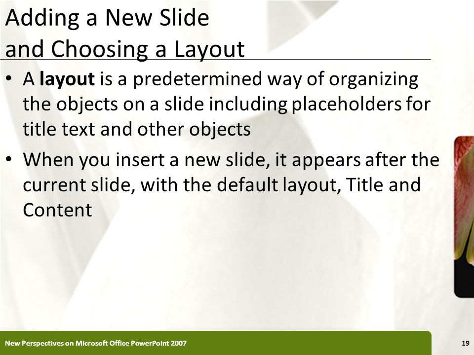 XP Adding a New Slide and Choosing a Layout A layout is a predetermined way of organizing the objects on a slide including placeholders for title text