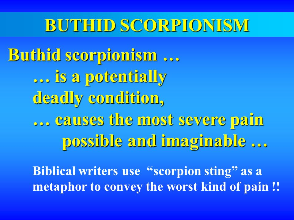 BUTHID SCORPIONISM Buthid scorpionism … Buthid scorpionism … … is a potentially deadly condition, … causes the most severe pain possible and imaginabl