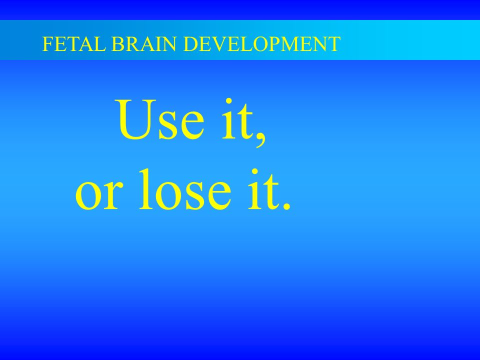FETAL BRAIN DEVELOPMENT Use it, or lose it.