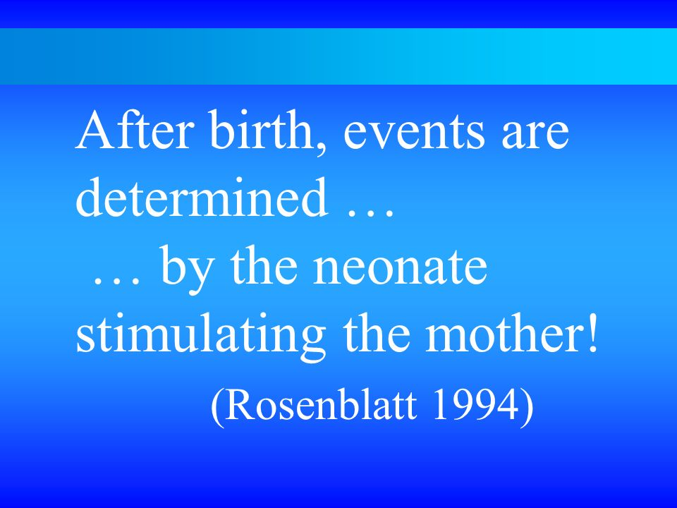 After birth, events are determined … … by the neonate stimulating the mother! (Rosenblatt 1994)
