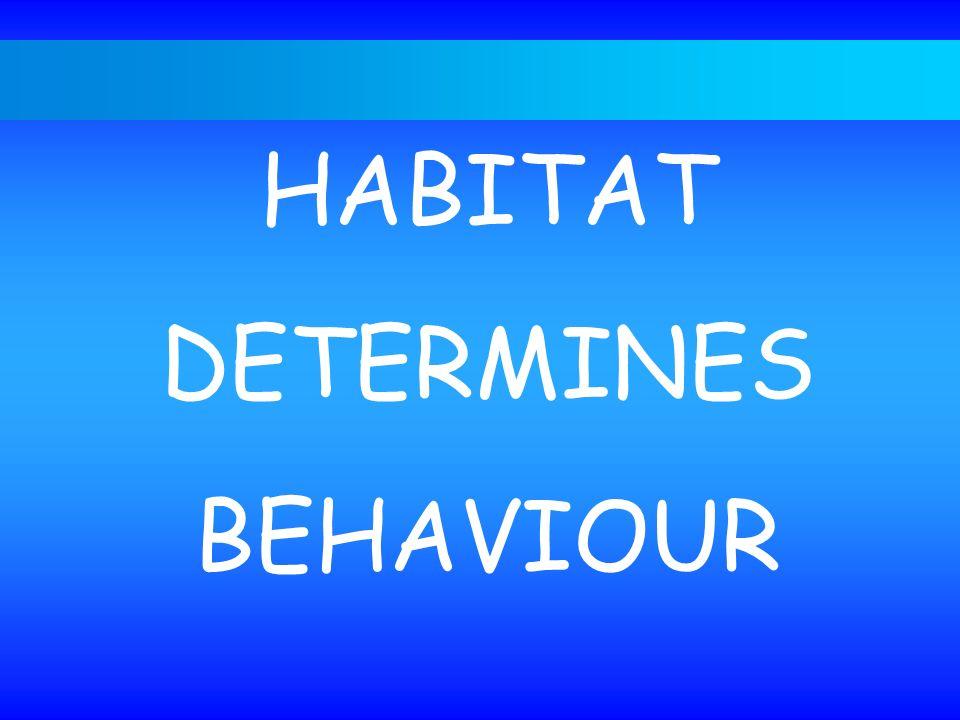 The habitat - niche concept HABITAT DETERMINES BEHAVIOUR