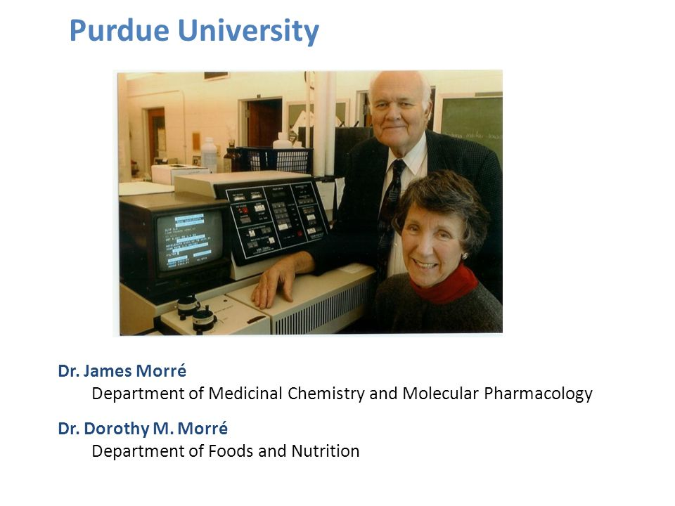 Dr. James Morré Department of Medicinal Chemistry and Molecular Pharmacology Dr. Dorothy M. Morré Department of Foods and Nutrition Purdue University