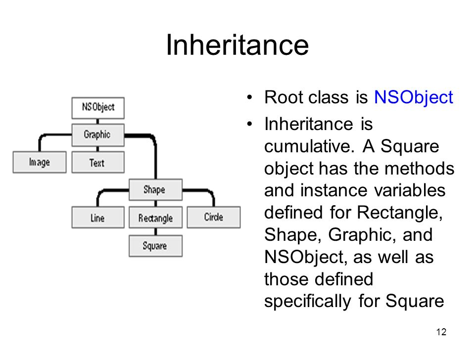 12 Inheritance Root class is NSObject Inheritance is cumulative.