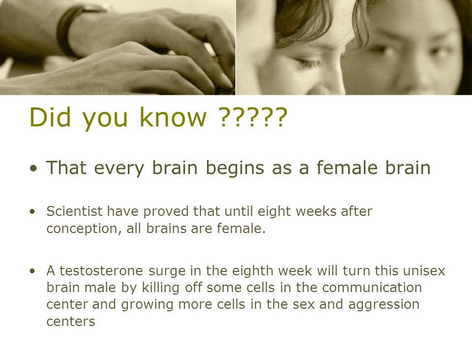 Did you know ????? That every brain begins as a female brain Scientist have proved that until eight weeks after conception, all brains are female. A t