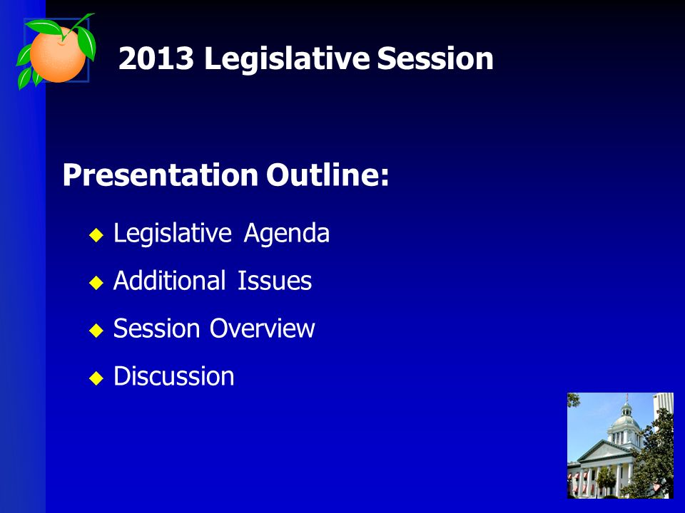 Presentation Outline: Legislative Agenda Additional Issues Session Overview Discussion 2013 Legislative Session