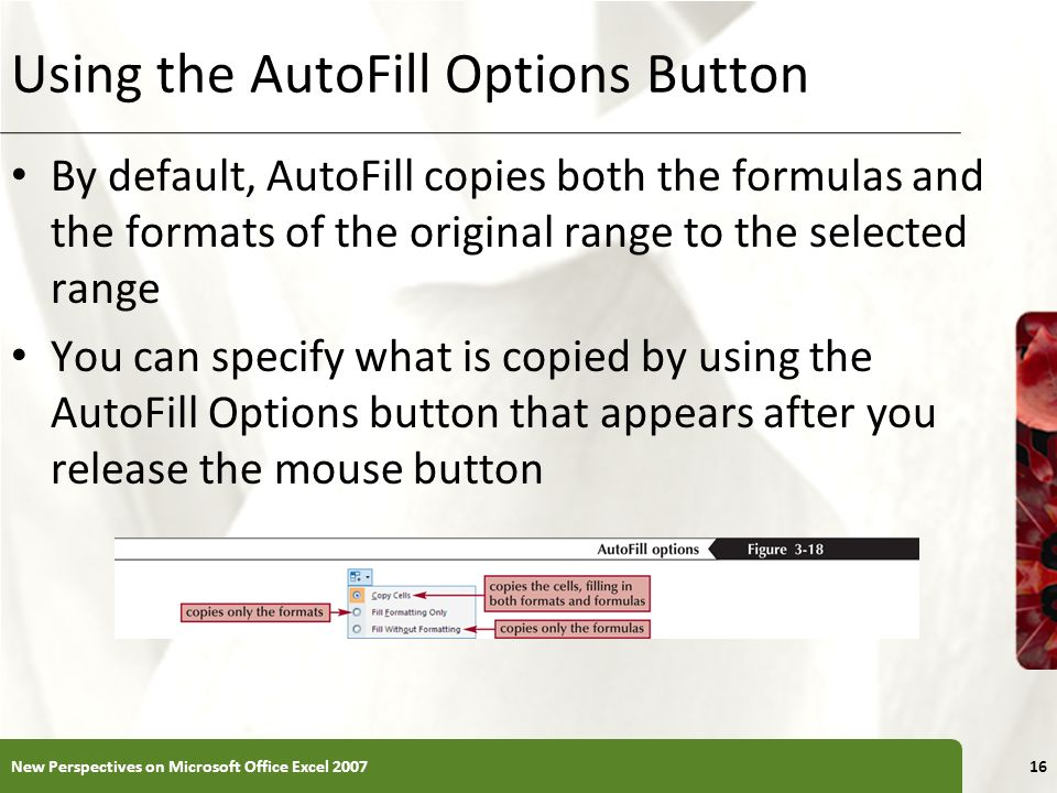 XP Using the AutoFill Options Button By default, AutoFill copies both the formulas and the formats of the original range to the selected range You can