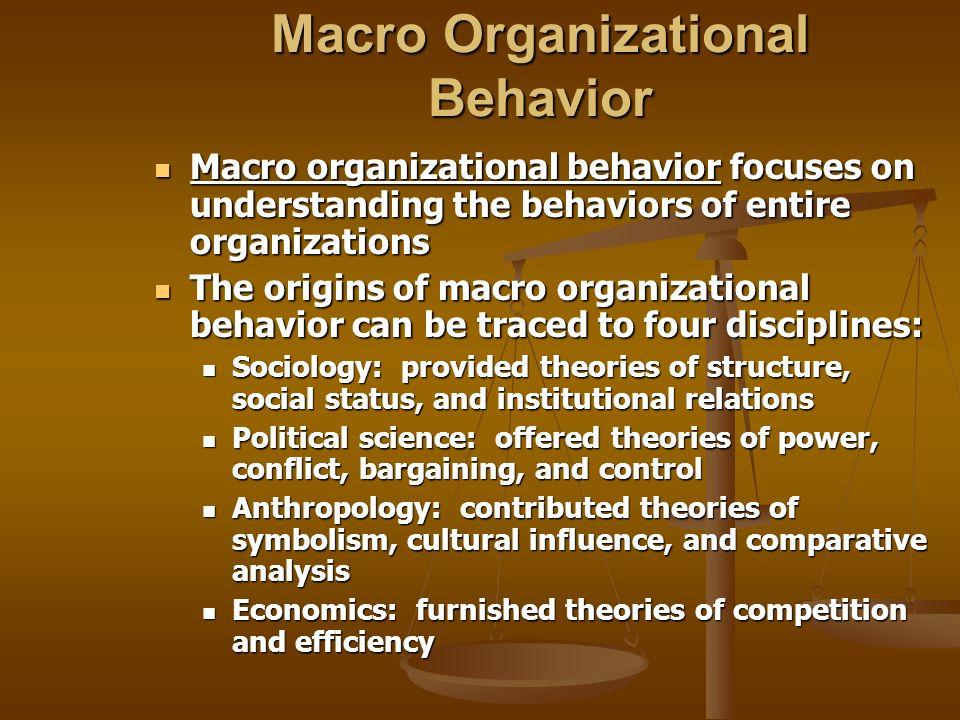 Macro Organizational Behavior Macro organizational behavior focuses on understanding the behaviors of entire organizations Macro organizational behavi