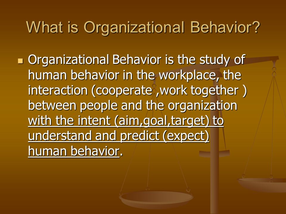 organizations behaviour Concepts of organizational behaviour print human resources are precious and the behaviour of human blurred boundaries-as organizations become more.