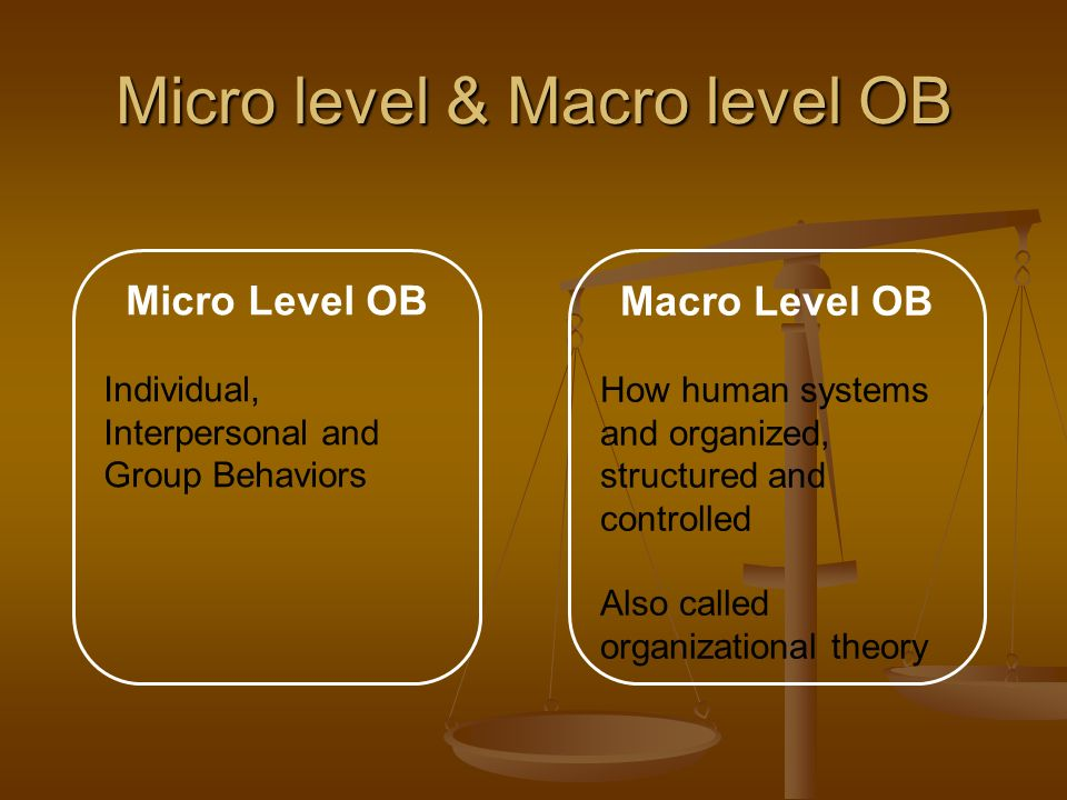 Micro level & Macro level OB Micro Level OB Individual, Interpersonal and Group Behaviors Macro Level OB How human systems and organized, structured a