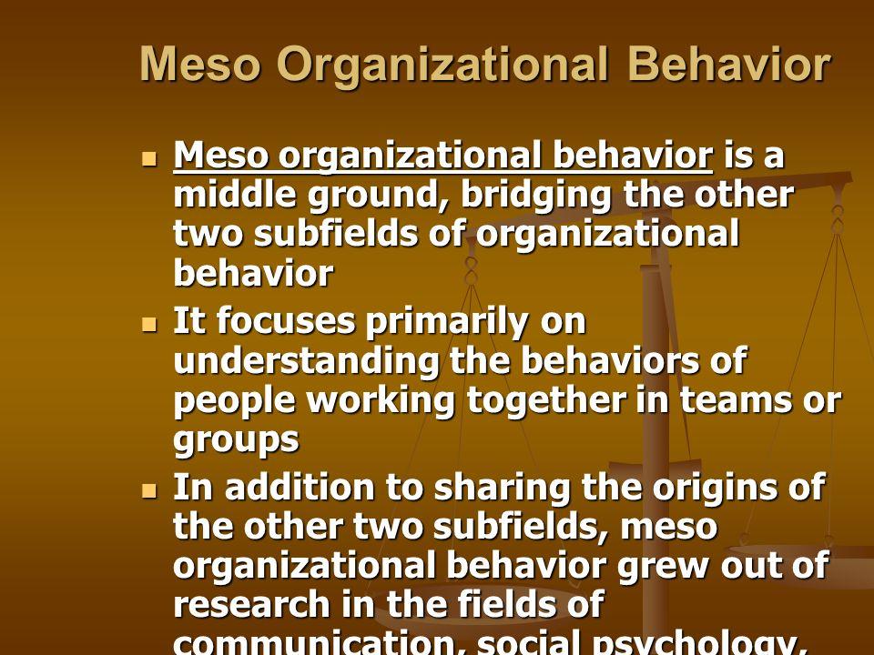 Meso Organizational Behavior Meso organizational behavior is a middle ground, bridging the other two subfields of organizational behavior Meso organiz
