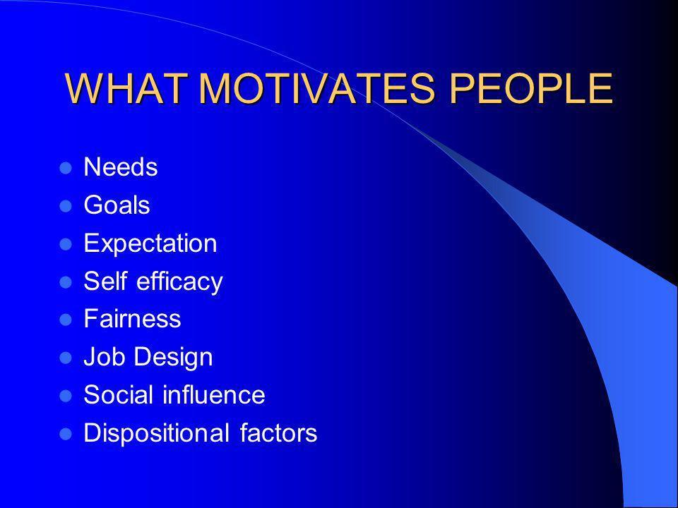 WHAT MOTIVATES PEOPLE Needs Goals Expectation Self efficacy Fairness Job Design Social influence Dispositional factors