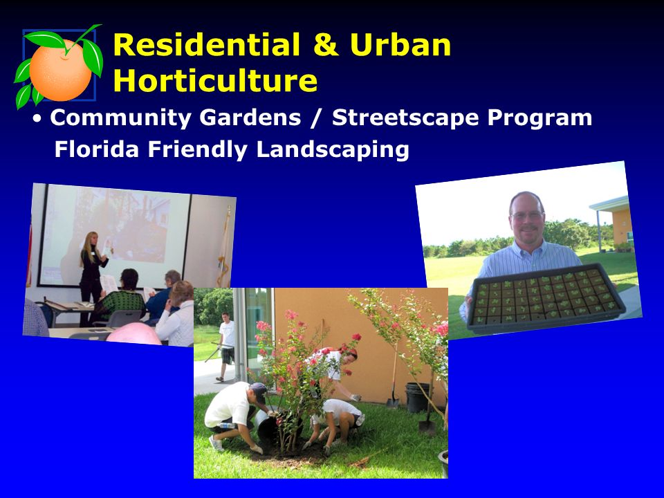 Community Gardens / Streetscape Program Florida Friendly Landscaping Residential & Urban Horticulture