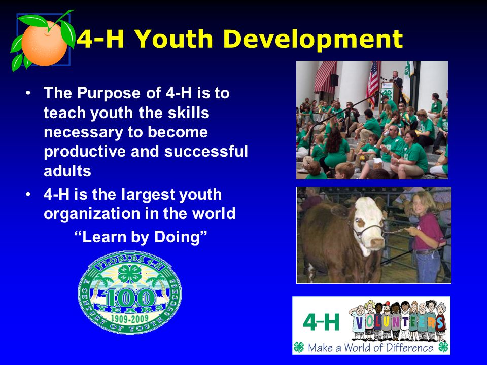 The Purpose of 4-H is to teach youth the skills necessary to become productive and successful adults 4-H is the largest youth organization in the world Learn by Doing 4-H Youth Development