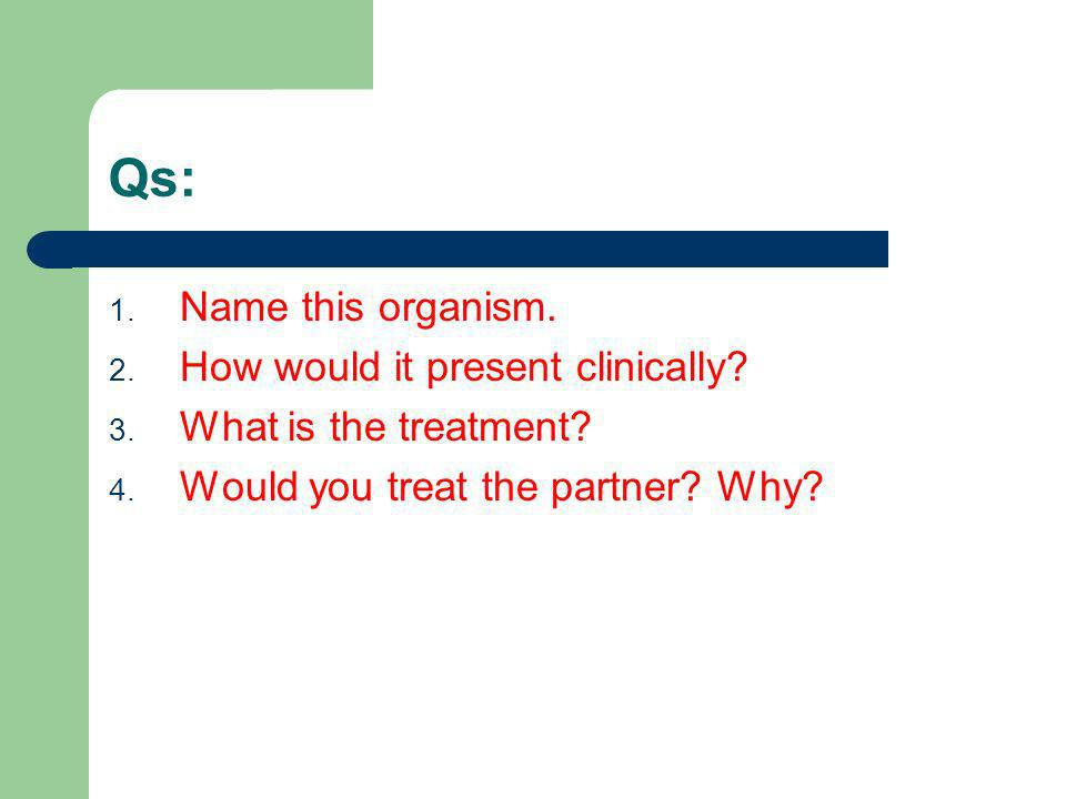 Qs: 1. Name this organism. 2. How would it present clinically? 3. What is the treatment? 4. Would you treat the partner? Why?