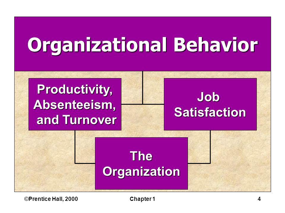 ©Prentice Hall, 2000Chapter 14 Organizational Behavior JobSatisfactionProductivity,Absenteeism, and Turnover and Turnover TheOrganization