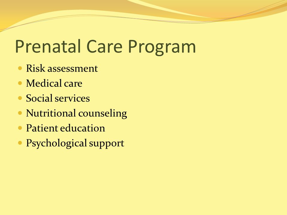 Prenatal Care Program Risk assessment Medical care Social services Nutritional counseling Patient education Psychological support