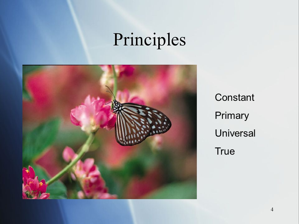 4 Principles Constant Primary Universal True