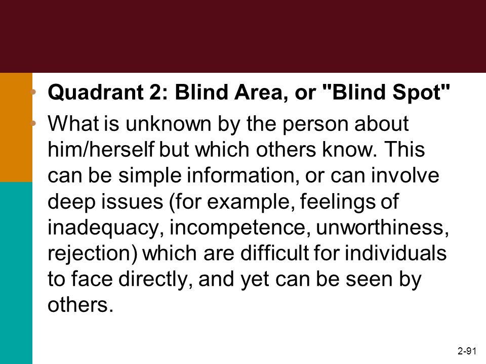 2-91 Quadrant 2: Blind Area, or