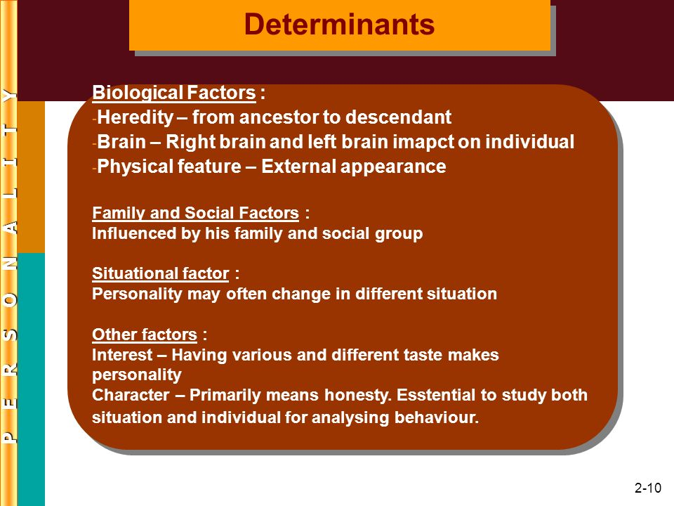 2-10 Biological Factors : - Heredity – from ancestor to descendant - Brain – Right brain and left brain imapct on individual - Physical feature – Exte