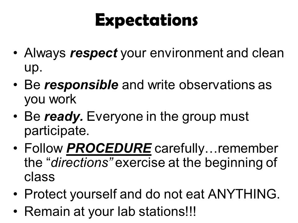 Expectations Always respect your environment and clean up. Be responsible and write observations as you work Be ready. Everyone in the group must part