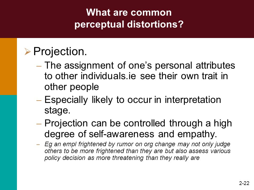2-21 What are common perceptual distortions? Halo effects. – Occur when one attribute of a person or situation is used to develop an overall impressio