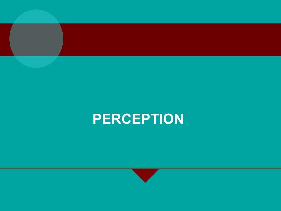 2-2 INDIVIDUAL PROCESSES – PERCEPTION The concept and need for studying Perceptual organization Perceptual interpretation Attribution process Perceivi