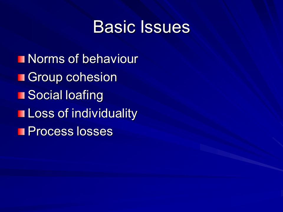 Basic Issues Norms of behaviour Group cohesion Social loafing Loss of individuality Process losses