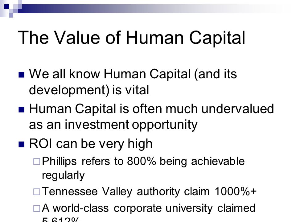 The Value of Human Capital We all know Human Capital (and its development) is vital Human Capital is often much undervalued as an investment opportuni