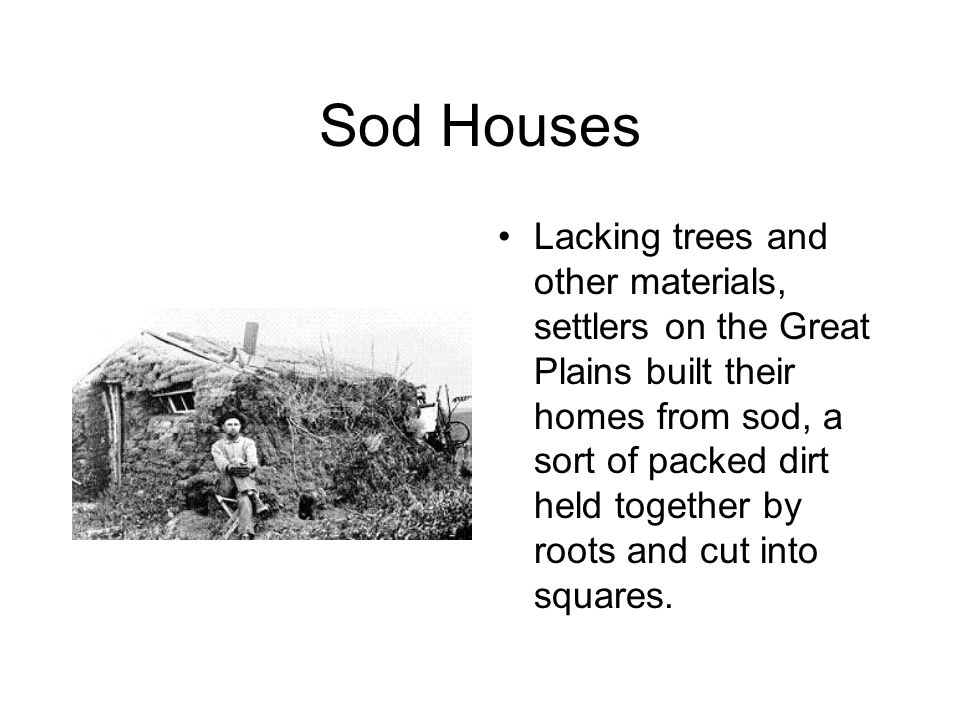 Sod Houses Lacking trees and other materials, settlers on the Great Plains built their homes from sod, a sort of packed dirt held together by roots and cut into squares.
